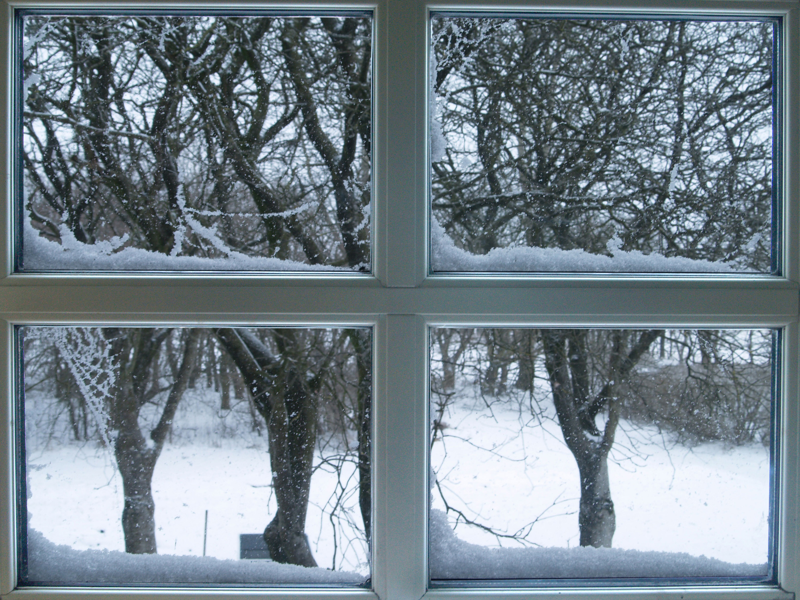 winterproofing your home - icy windows