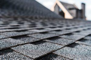 roof focus